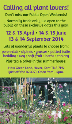 How Green Nursery public open days!