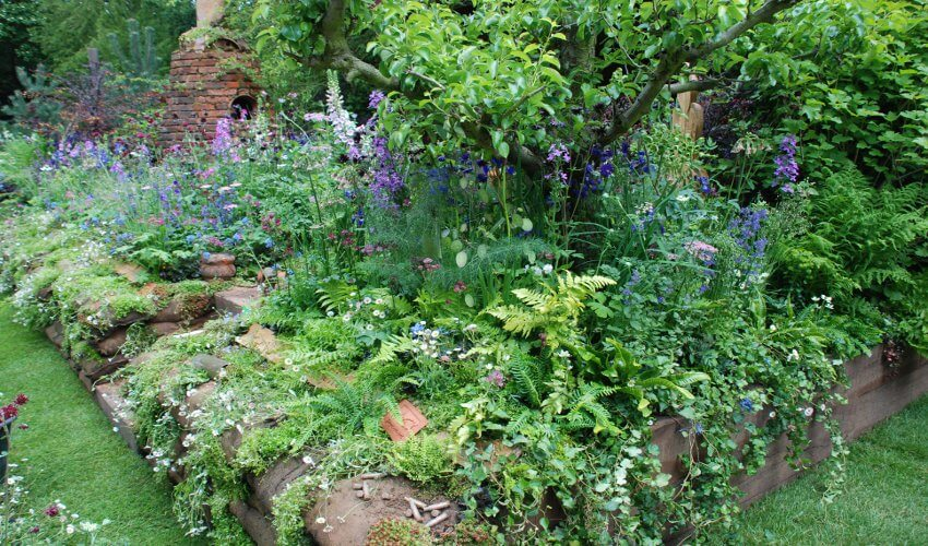 DialAFlight Potter's Garden planting 3