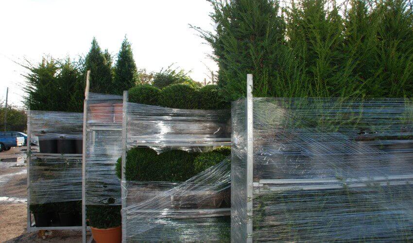 Topiary Order