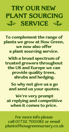 How Green Plant sourcing service details
