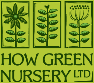 How Green Nursery - wholesale growers based in the south east