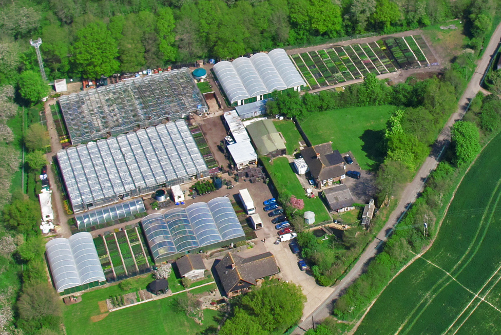 A bird's eye view of the nursery