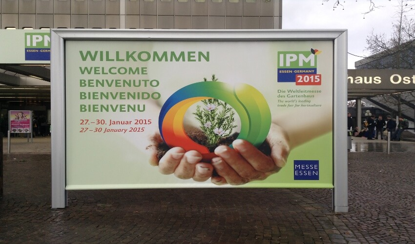 The IPM show banner