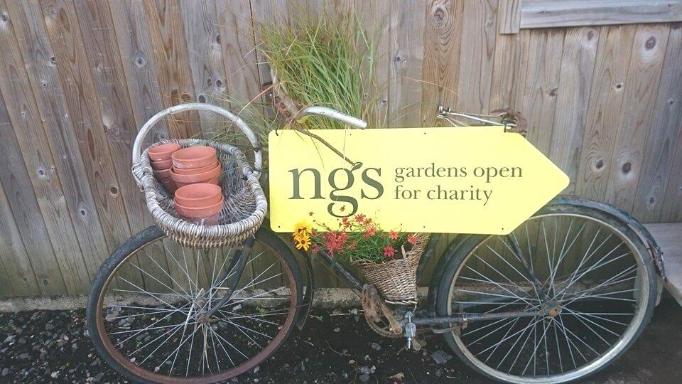 NGS bike photo lightened